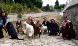 Klosterneuburgs erste Hundeauslaufzone